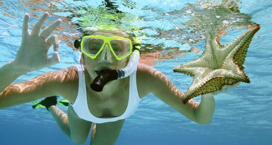 Propulsor acuatico Seabob